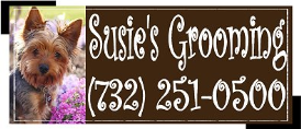 Susie's Grooming
